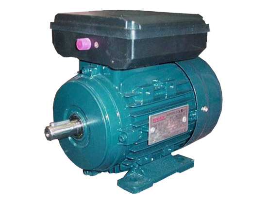 Single Phase Induction Motors 240V