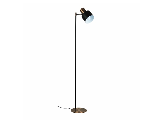 Floor Lamp